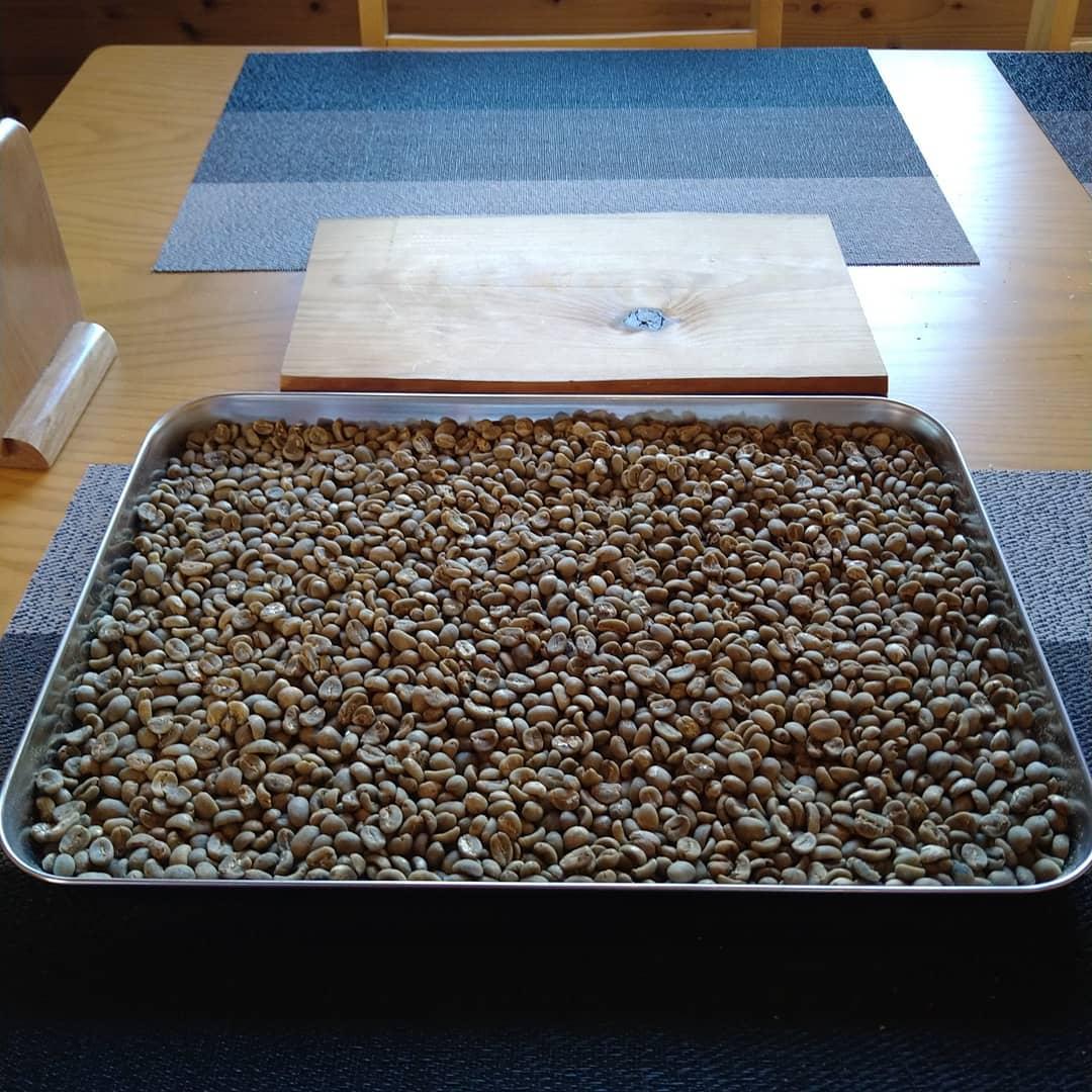 今日も元気に営業中です。 今日は1番に焙煎のための豆の準備です。  お客様に喜んで貰えるように届いた豆を1度目を通し相応しく無いものをはじき出して行きます。  3枚目の写真がはじき出して焙煎しないものです。  酷い見た目で嫌な黒い所ありますよね。  今日は仕事内容の紹介でした。  本日のコーヒーは エルサルバドル アイスブレンド デカフェ    です。  皆様の1日が健やかで幸せにありますようにそして今日出逢う珈琲が皆様に幸せを運べますように          # 喫茶店 # カフェピアノ # コーヒー好き