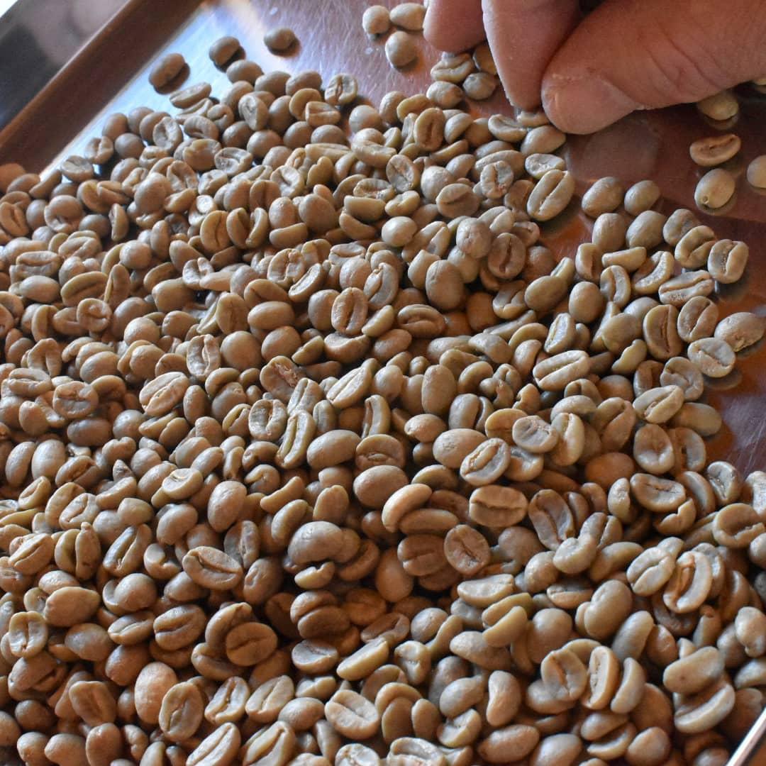 今日は焙煎予定です。 焙煎前のお仕事中です。 焙煎機に投入するのはコーヒー豆では無くて「丁寧な仕事」と心掛けております。 焙煎予定は グアテマラ タンザニア ジャワアラビカ 3種類の予定です。 焼き上がりを是非楽しみにして下さい。  本日のコーヒーは ブルンジ アイスブレンド デカフェ     です。  皆様の1日が健やかで幸せにありますように そして今日出逢う珈琲が皆様に幸せを運べますように          # 喫茶店